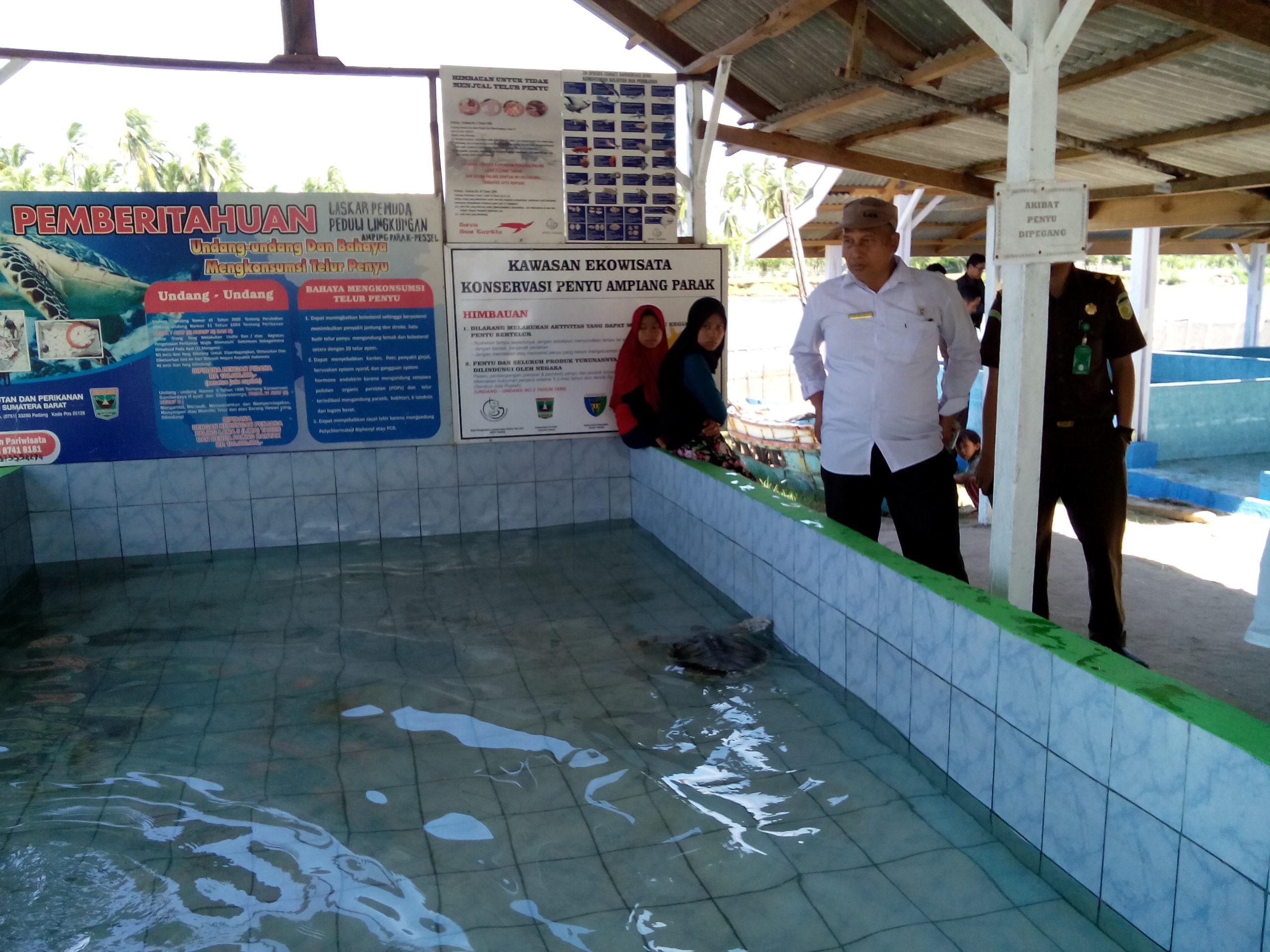 26-03-18_Eduwisata_Konservasi_Penyu_di_Pantai_Ampingparak.jpg