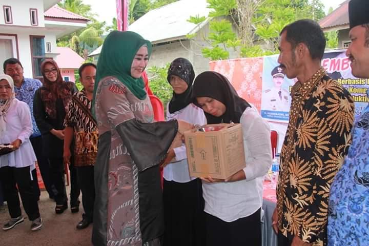 Ketua Dekranasda Pessel Lisda Hendrajoni : Lima Kecamatan di Pessel Kembangkan Usaha Batik