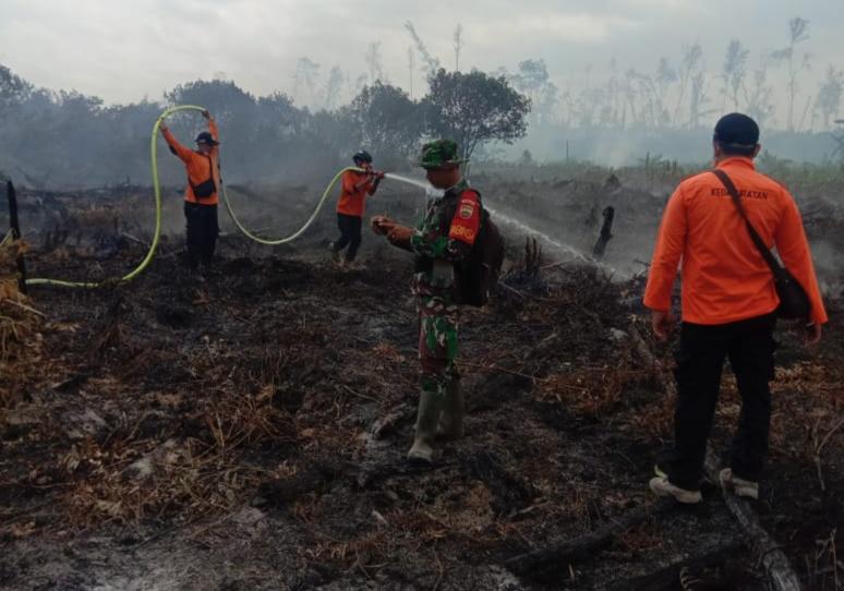 Tim Terus Pantau Kebakaran Lahan Pesisir Selatan