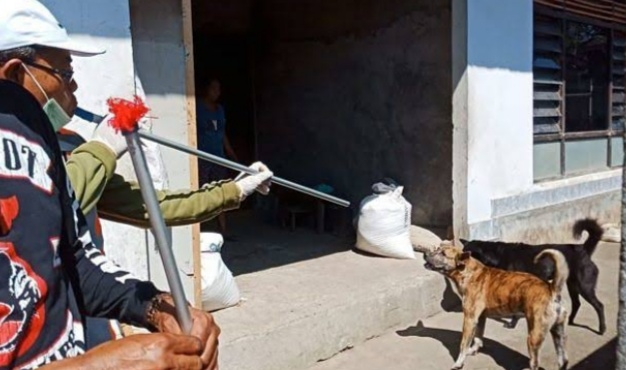 Dinas Peternakan Upayakan Masyarakat Bebas Dari Gigitan Hewan Penular Rabies