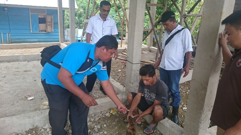 Petugas Dinas Peternakan dan Keswan  Pessel bersama Petugas Puskeswan Painan memberikan vaksinasi Rabies di Salido Saribulan